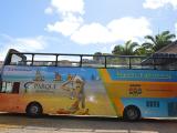 salvador-bus-acao2