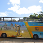 salvador-bus-acao2